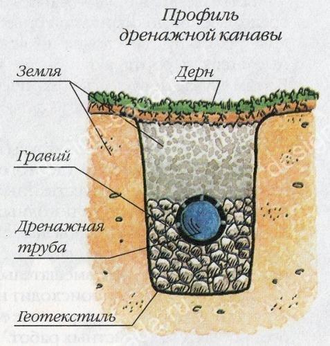 Дренажная канава септика