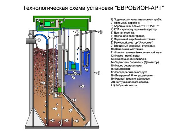 Евробион внутреннее устройство и характеристики